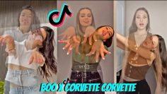 BOO x CORVETTE CORVETTE Dance Challenge | TikTok Compilation